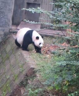 china-tours6.jpg